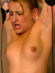 Spunky, Jessie Cox, bites off more that she can chew when hiring unorthodox trainer Lorelei Lee.