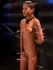 Skin Diamond Live ShowThe Final Test of Slave Training ash